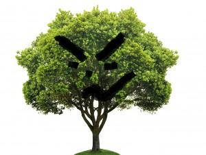 1609-tree
